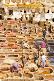 Tannery - Fez I
