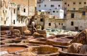 Tannery - Fez II