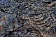 Lava - Galapagos